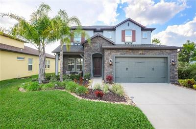 Wesley Chapel Single Family Home For Sale: 4065 Empoli Court