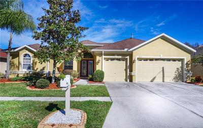 Wesley Chapel Single Family Home For Sale: 1812 Beaconsfield Drive