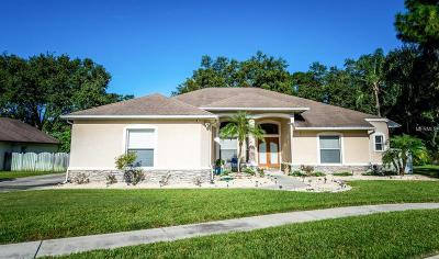 Tampa Single Family Home For Sale: 14922 Evershine Street