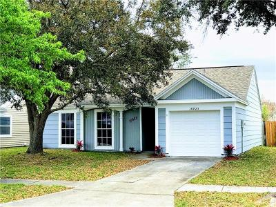 Tampa Single Family Home For Sale: 10923 Greenaire Drive