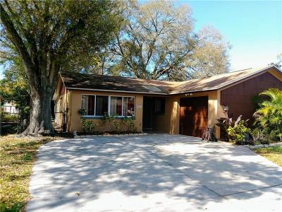 Tampa Single Family Home For Sale: 9023 Arndale Circle
