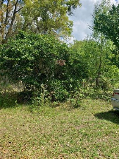 Bartow Residential Lots & Land For Sale: 2929 Dudley Drive