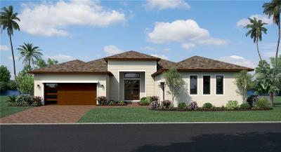 Wesley Chapel Single Family Home For Sale: 31877 Tortuga Shore Loop