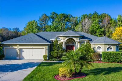 New Port Richey Single Family Home For Sale: 10726 Miracle Lane