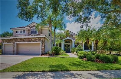 Tampa Single Family Home For Sale: 9807 Tree Tops Lake Road