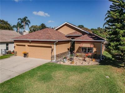 Palm Harbor Single Family Home For Sale: 47 Citrus Drive