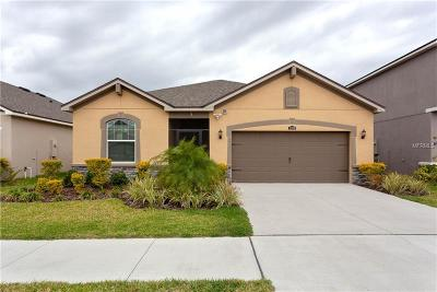 Riverview Single Family Home For Sale: 12370 Streambed Drive