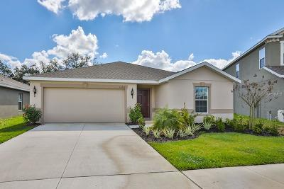 Gibsonton Single Family Home For Sale: 12210 Ledbury Commons Drive