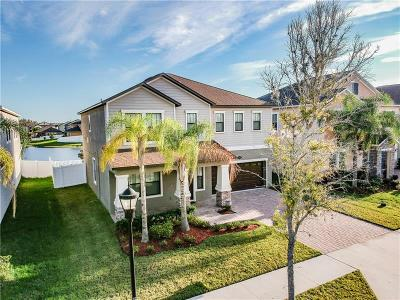 Tampa Single Family Home For Sale: 19429 Paddock View Drive