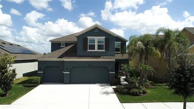Riverview Single Family Home For Sale: 13336 Palmera Vista Drive