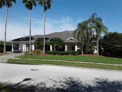 Palm Harbor Single Family Home For Sale: 1930 Lago Vista Boulevard