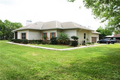 Plant City Single Family Home For Sale: 3909 Kirkland Road