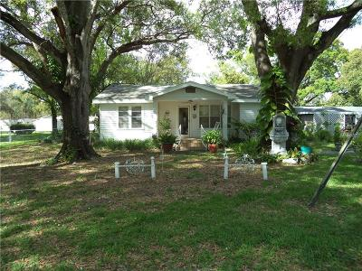 Tampa Single Family Home For Sale: 2523 W Bird Street