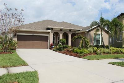 Apollo Beach Single Family Home For Sale: 6651 Current Dr