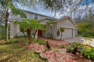 Single Family Home For Sale: 16201 Leta Trace Court