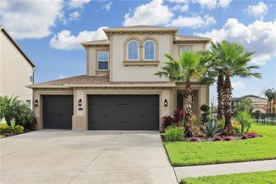 Wesley Chapel Single Family Home For Sale: 28883 Perilli Place