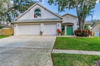 Hernando County, Hillsborough County, Pasco County, Pinellas County Single Family Home For Sale: 4528 River Close Blvd