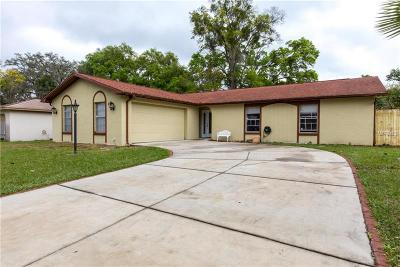 Valrico Single Family Home For Sale: 4004 Highgate Drive