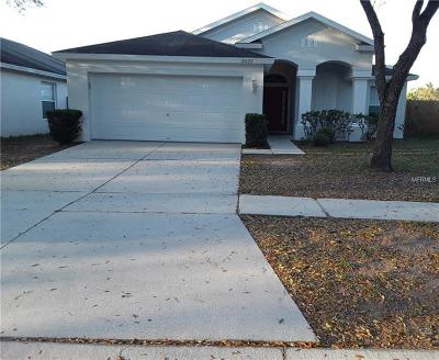 Riverview Single Family Home For Sale: 10609 Egret Haven Lane