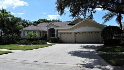Palm Harbor Single Family Home For Sale: 4740 Highgate Boulevard