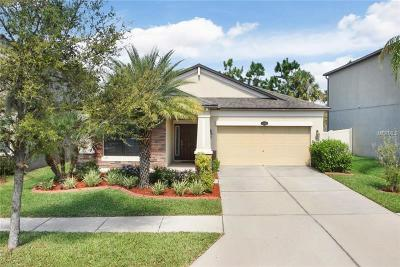 Riverview Single Family Home For Sale: 11620 Palmetto Pine Street