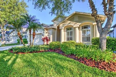 Lithia Single Family Home For Sale: 15533 Martinmeadow Drive