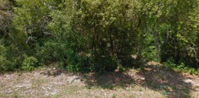 New Port Richey Residential Lots & Land For Sale: Lantana Avenue