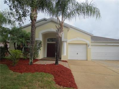Wesley Chapel Single Family Home For Sale: 25613 Risen Star Drive