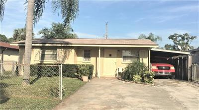 Tampa Single Family Home For Sale: 6217 N Lois Avenue