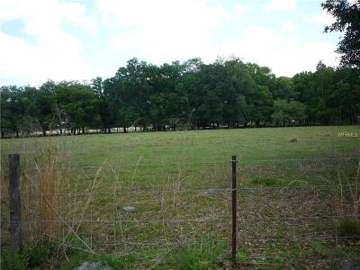 Plant City Residential Lots & Land For Sale