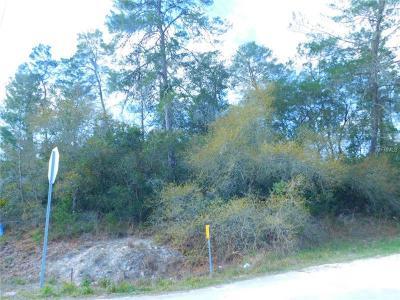 Weeki Wachee Residential Lots & Land For Sale: 6533 Owl Road