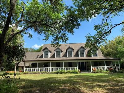 Wimauma Single Family Home For Sale: 2123 Lone Palm Drive