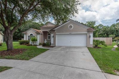 Lithia Single Family Home For Sale: 16917 Harrierridge Place