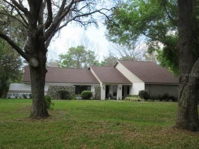 Hillsborough County Single Family Home For Sale: 505 Centerbrook Drive