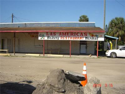 Hillsborough County Commercial For Sale: 11101 S 41 Highway