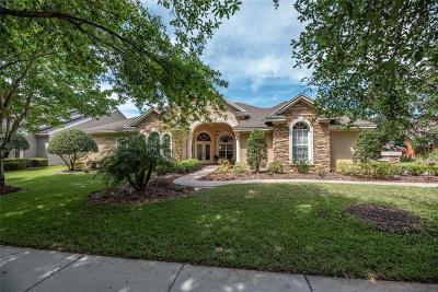 Lithia Single Family Home For Sale: 6111 Kestrelridge Drive