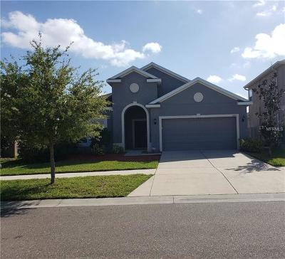 Riverview Single Family Home For Sale: 12110 Whistling Wind Drive