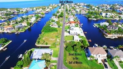 Hernando Beach Residential Lots & Land For Sale: 4261 Flexer Drive
