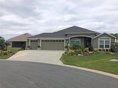 Single Family Home For Sale: 749 Vibrant Lane