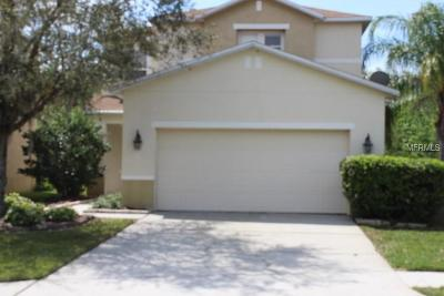 Wesley Chapel Single Family Home For Sale: 3635 Peppervine Place