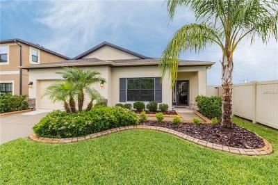 Riverview Single Family Home For Sale: 11526 Scarlet Ibis Place