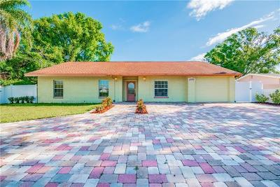 Hillsborough County Single Family Home For Sale: 10707 Drummond Road