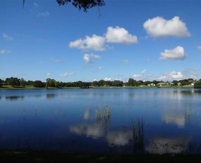 Residential Lots & Land For Sale: Lake Marie Boulevard