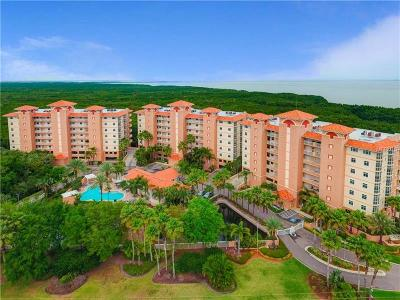 St Pete Beach, St Petersburg, St Petersburg Beach Condo For Sale: 12055 Gandy Boulevard N #233