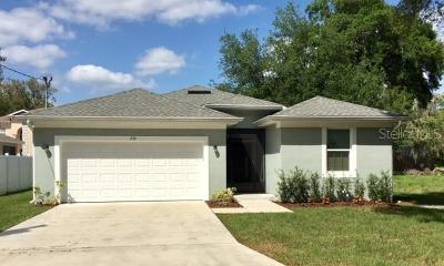 Hillsborough County Single Family Home For Sale: 236 Clayton Street