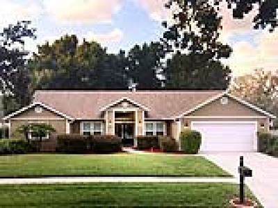 Valrico Single Family Home For Sale: 2602 Durant Oaks Drive