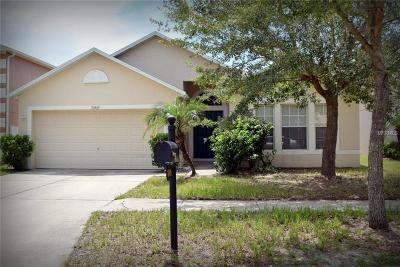 Riverview Single Family Home For Sale: 10409 River Bream Drive