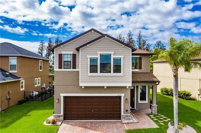 Pasco County Single Family Home For Sale: 11878 Lake Boulevard