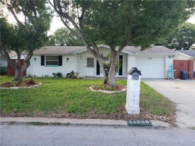 Pasco County Single Family Home For Sale: 11220 Meadow Drive