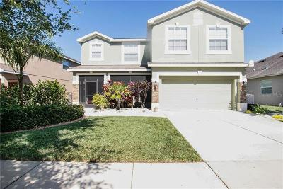 Ruskin Single Family Home For Sale: 10344 Celtic Ash Drive